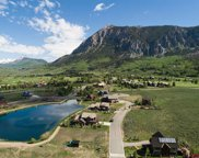 368 Larkspur, Crested Butte image