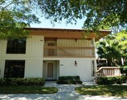 537 Brackenwood Place, Palm Beach Gardens image