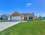 204 Hickory Springs Ct, Conway image