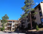 31270 John Wallace Road Unit 204, Evergreen image
