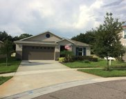 959 Emerald Green Court, Kissimmee image