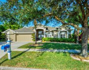 4317 Waterford Landing Drive, Lutz image