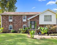 2909 Cherry Hills Dr, Antioch image