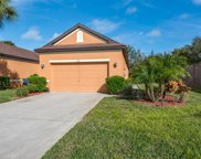 3700 Costa Maya Way, Estero image