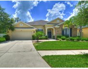 7101 Derwent Glen Circle, Land O Lakes image