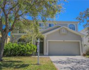 Pinellas County Real Estate Pinellas County Homes