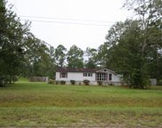 4863 PEPPERGRASS ST, Middleburg image
