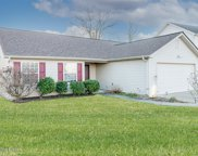 10603 Irvin Pines Dr, Louisville image