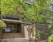 1555 North Sandburg Terrace Unit 117K, Chicago image