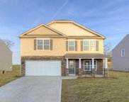 725 Rose Mallow Drive, Zebulon image