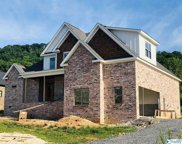 125 Lake Creek Drive, Guntersville image