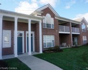 16731 Carriage Way, Northville image