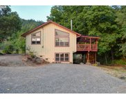 47948 WESTOAK  RD, Oakridge image