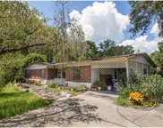 12402 Mcintosh Road, Thonotosassa image