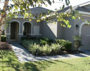 2642 Stargrass Circle, Clermont image