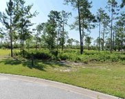 9100 Minim Ct., Myrtle Beach image