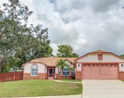 1501 Country Mansion Court, Apopka image