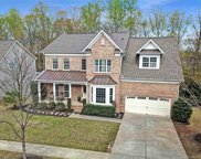 368 Windell  Drive, Fort Mill image