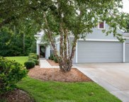47 Whitebark Lane, Bluffton image