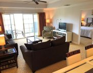 1100 Sunset View Circle Unit 302, Reunion image