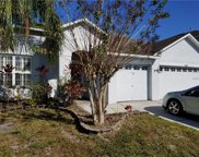 10406 Meadow Spring Drive, Tampa image