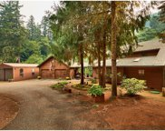 12751 SW GILBERT CREEK  RD, Willamina image