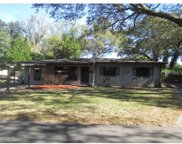 10121 N Willow Avenue, Tampa image