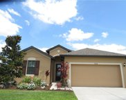 12216 Creek Preserve Dr, Riverview image