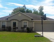 114 Spoonbill Court, Poinciana image