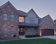 5323 Christa Drive, Naperville image