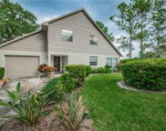 3409 Rochelle Court, Clearwater image