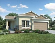 10665 Cardera Drive, Riverview image