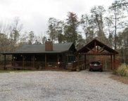 2246 French Broad River Rd, Seymour image