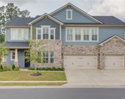 1263  Arges River Drive, Fort Mill image