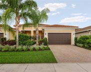 13395 Silktail Dr, Naples image