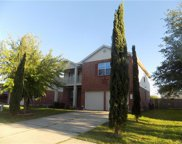 208 Mossy Rock Dr, Hutto image