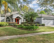 10156 Whisper Pointe Drive, Tampa image