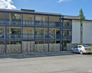 12303 SE 60th St Unit 3B, Bellevue image
