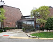 3085 Pheasant Creek Drive Unit 316, Northbrook image