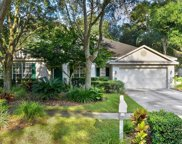 1528 Rolling Meadow Drive, Valrico image