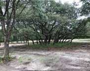 21401 S Buckhill Road, Clermont image