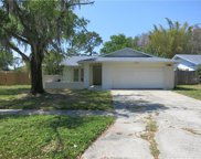 13906 Country Court Drive, Tampa image