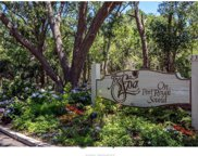 239 Beach City Road Unit #3317, Hilton Head Island image