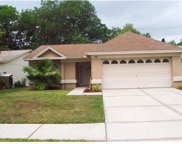 4507 Cabbage Palm Drive, Valrico image