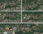 5 Lots Argonne/Foxcroft Road, Boiling Spring Lakes image