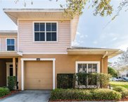 7909 Bally Money Road, Tampa image