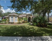 5715 Ternwater Place, Lithia image