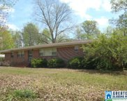 140 Wolf Creek Rd, Pell City image