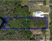 11235 Lake Louisa Road, Clermont image