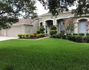 13049 Thoroughbred Drive, Dade City image